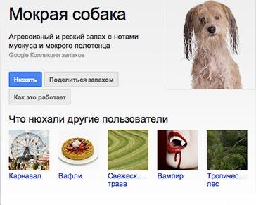 Поиск Google Нос