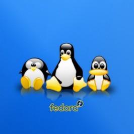 Установка Linux Fedora