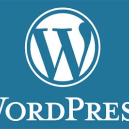Особенности выбора хостинга для сайта на движке wordpress